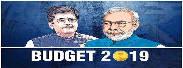 interim budget 2019-20 highlights