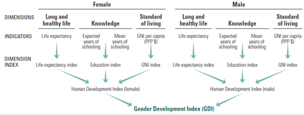 • Gender Development Index GDI