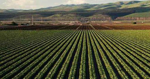 cropping system and types of cropping system