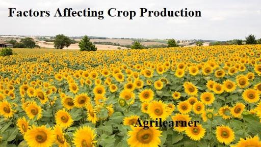 factors affecting crop production